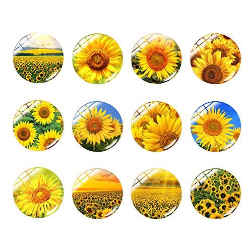 JIHUOO 100 piezas de 12 mm Sunfower domo de cristal cabujones medio redondo mosaico floral azulejos para la fabricación de joyas fotográficas