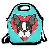 Cara de perro Boston Terrier, color verde bolsas de almuerzo con aislamiento de viaje Picnic almuerzo caja bolso con correa para el hombro para las mujeres adolescentes Niñas Niños Adultos