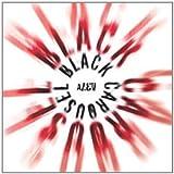 Songtexte von Alev - Black Carousel