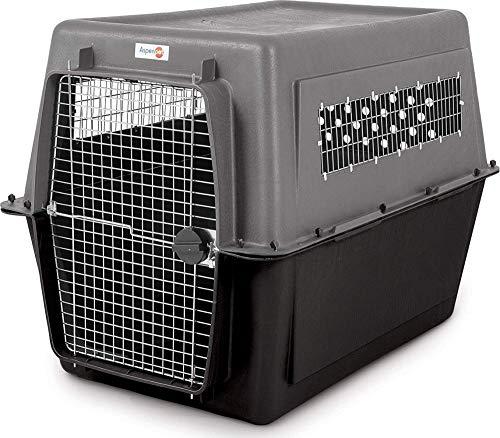Aspen Pet Porter Heavy-Duty Pet Carrier,Dark Gray/Black,90-125 LBS
