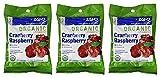 Organic Cranberry Raspberry Herbal Zand 18 Lozenge