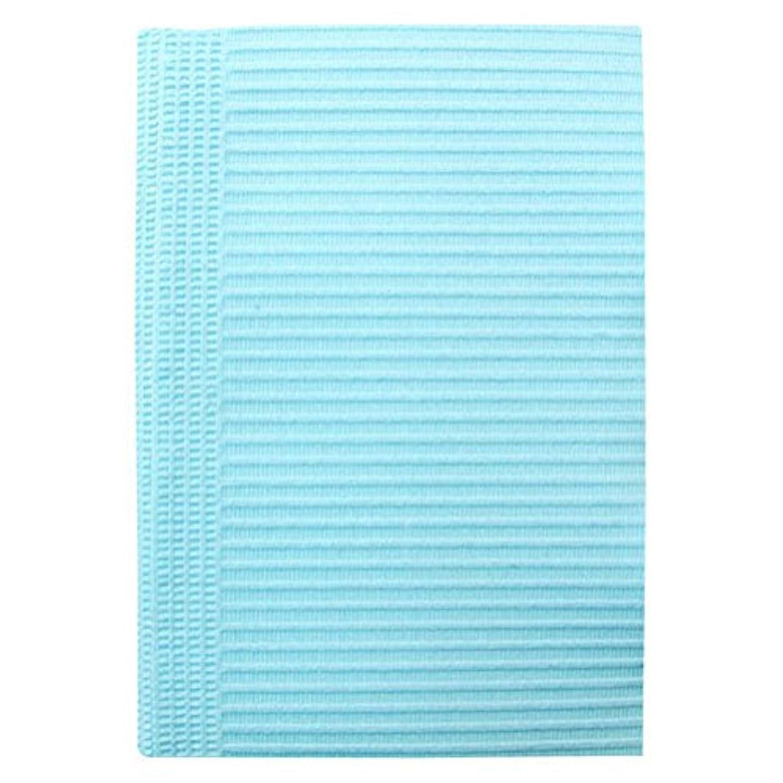 泥棒欠陥瞑想的SunshineBabe サンシャインベビー ペーパーシート 50枚 ブルー
