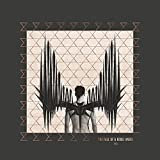 The Fall Of A Rebel Angel [Vinilo]