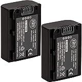 BM Premium Camcorder Batteries