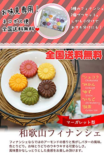 ふみこ農園和歌山フルーツフィナンシェ10個入(5種各2個)上品な焼き菓子マーガレット型のカラフルスイーツ
