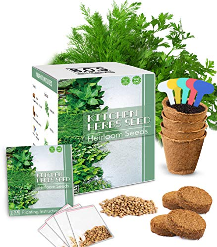 Herb Garden Starter Kit - Organic Non GMO Parsley Chives Basil Coriander Seeds Potting Soil, Peat Pots DIY Home Gardening Gift Set