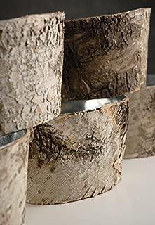 Richland Natural Birch Bark Zinc Pots Planter 6