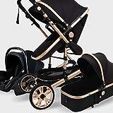 Cochecito de viaje Sistema 3 en 1, ajustable Alta Vista cochecito de niño, cochecito del paraguas sistema de viaje con el bebé Cesta Y antichoque Springs, infantil carro Cochecito ( Color : Black )