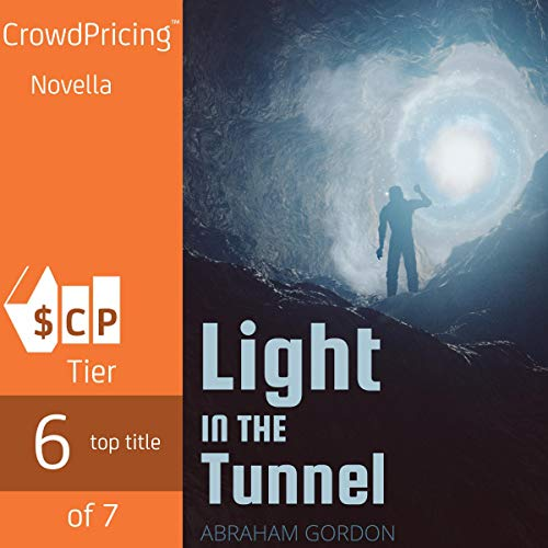 A Light in the Tunnel  By  cover art