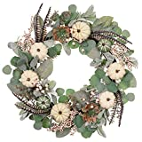 Valery Madelyn 24 inch Fall Wreath for Front Door with White Pumpkins, Artificial Wreath with Berries Succulents Flocked Lambs Ear Leaf for Autumn Indoor Outdoor Window Wall Thanksgiving Home Decor