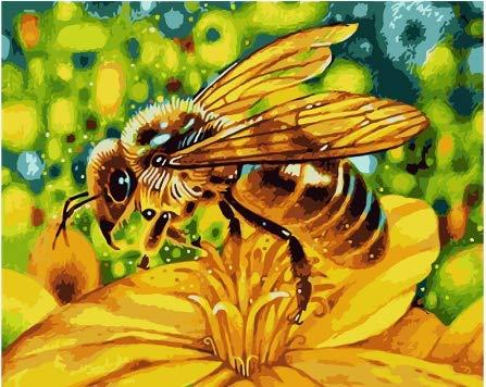 nobrand Puzzles 1000 Stück Puzzle Erwachsenenkinder Bildungsgeschenk Victoria Wadfllis, eine Biene, die Honig sammelt