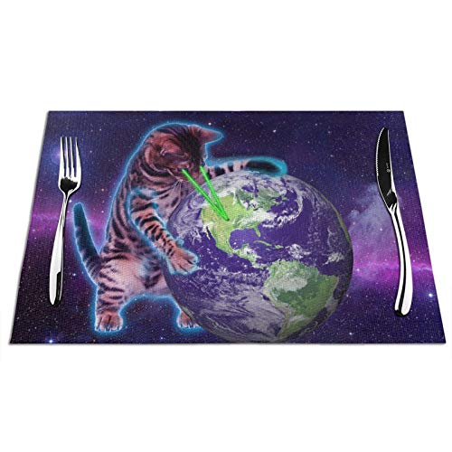 Manteles individuales tejidos, diseño de ojo de láser y gato que destruye el mundo, manteles individuales lavables para mesa de comedor, esterillas de café, cocina, 30,5 x 45,7 cm