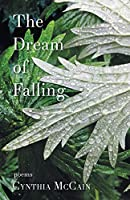 The Dream of Falling