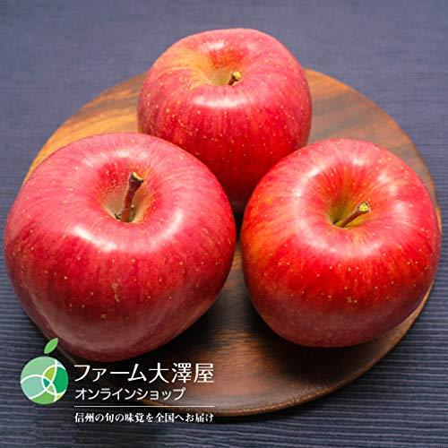 サンふじ(りんご)贈答用5kg(中・13〜16玉)長野県産