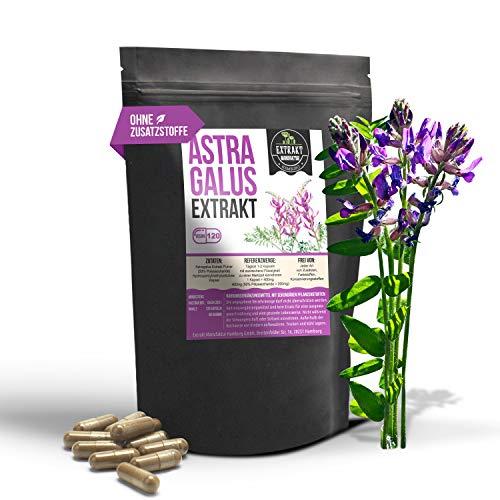 Astragalus EXTRAKT | 120 KAPSELN | 4000mg normales Tragant Pulver durch 10:1 Extrakt | vegan | ohne Zusätze Füll- und Fließmittel | in Deutschland hergestellt