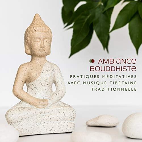 Ensemble de Musique Zen Relaxante