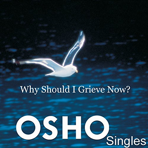 Why Should I Grieve Now? audiobook cover art