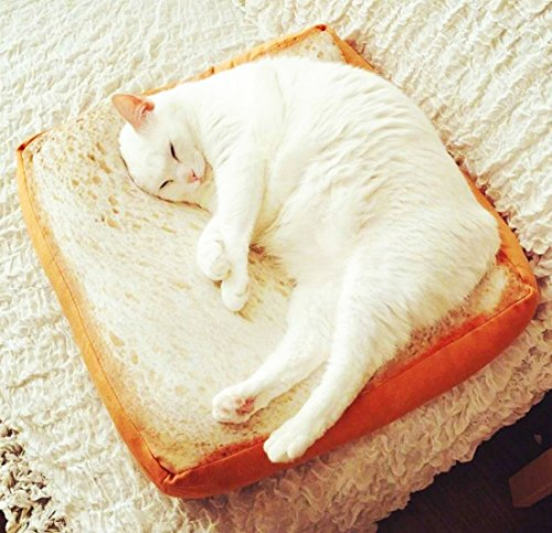 Gefryco Creative Toast Bread Slice Style Pet Mats Cushion Soft Warm Mattress Bed for Cats & Dogs (Sponge Core)