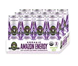 Sambazon Amazon Energy Drink, Low Calorie Acai Berry and Pomegranate, 12 Fl Oz (Pack of 12)