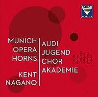 Various: Munich Opera Horns
