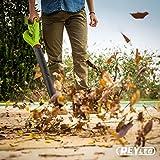 Zoom IMG-1 soffiatore per foglie morte 18