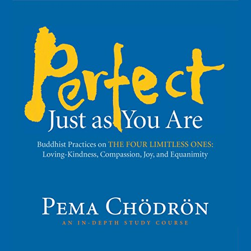 Perfect Just as You Are audiobook cover art