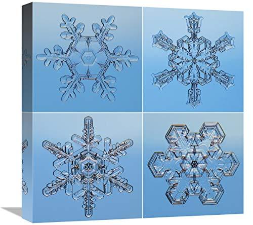 Global Gallery Kunstdruck auf Leinwand, Motiv Schneeflocken durch Mikroskope, 45,7 x 45,7 cm