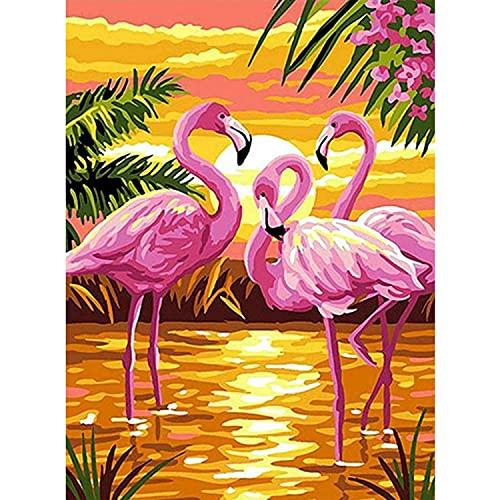 Xpboao Pintar por número - Flamencos Rosados en el Agua al Atardecer - Kit de Pintura acrílica de Bricolaje para Adultos y niños - Kit de decoración del hogar - 40x50cm - Sin Marco