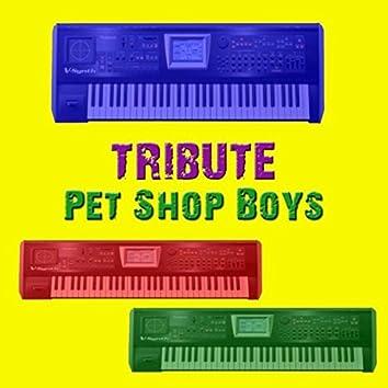 Tribute Pet Shop Boys