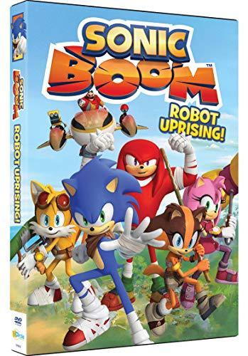 Sonic Boom: Robot Uprising