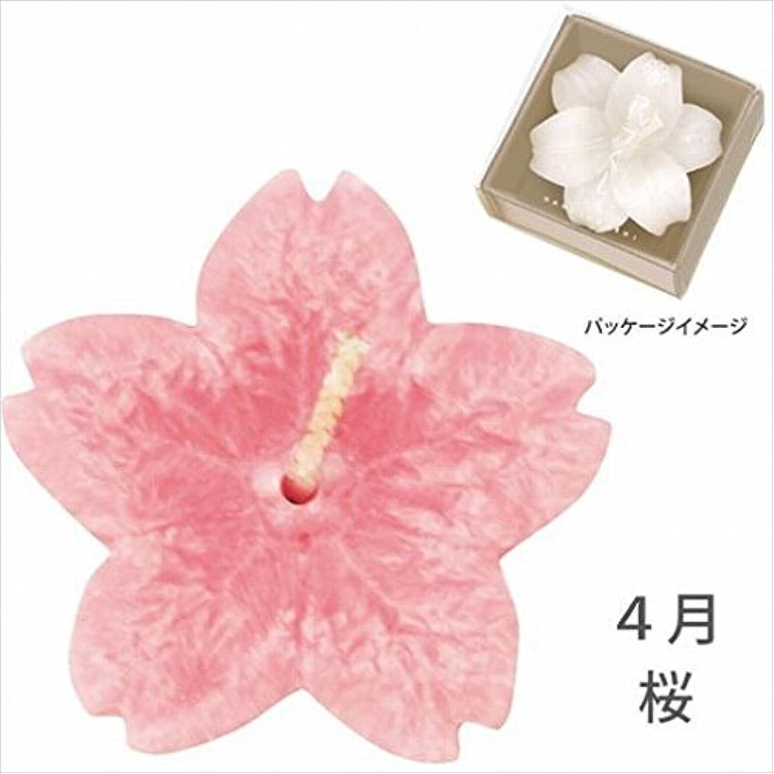 スチール間接的不屈カメヤマキャンドル(kameyama candle) 花づくし(植物性) 桜 「 桜(4月) 」 キャンドル