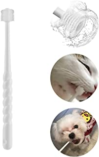 Toothbrush For Yorkie Puppy