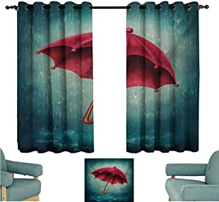 DONEECKL Decor Curtains Winter Authentic Retro Wooden Handle Under Fall Rainfall Torrent of Rain Urban Image Art Print Blackout Draperies for Bedroom Window W55 xL39 Teal