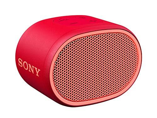 Sony SRS-XB01 Extra Bass Portable Wireless Speaker (Red)