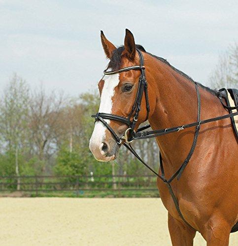Busse Thiedemann-Kombination Basic, Pony, schwarz/NP