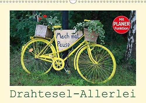 Drahtesel-Allerlei (Wandkalender 2020 DIN A3 quer): Fahrrad-Variationen – von ALT bis NEU ist alles dabei, mit PLANER-Funktion (Geburtstagskalender, 14 Seiten ) (CALVENDO Mobilitaet)