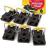 Instant Mouse Traps - Pack of 6, for Indoor / Outdoor - Easy Setup & Reusable Mice Catcher with Powerful Spring, Instantly Remove Unwanted Vermin from Your Home
