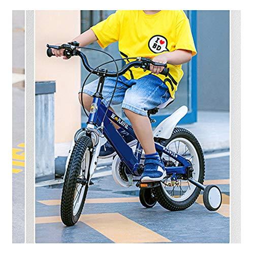 TOOSD Bicicleta para Niños De 14 Y 16 Pulgadas con Guardabarros Y Ruedas De Entrenamiento para Niñas Y Niños De 2 A 8 Años, Bicicleta De Entrenamiento para Niños,B,16