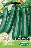 Germisem Diamant F1 Semi di Zucchine 2 g