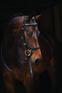 Horseware Rambo Micklem Competition Bridle, Black, Standard Horse