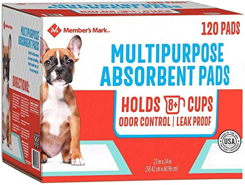 Pet Training Pads, 23 x 24-2 pack Total 240 Count