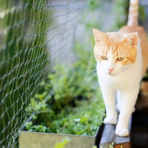 ALLEGRA Balkon Katzennetz !!!B-Ware MIT KLEINEN FEHLERN!!! Netz Schutznetz Katzengitter Grün 3x2 m Katzenschutznetz Katze Balkonschutz Balkonnetz Katzen Sicherheitsnetz Katzenschutz