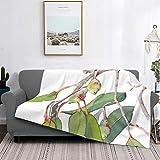 Manta de microfibra ultrasuave para decoración del hogar, manta de franela cálida antipilling para sofá, cama, campamento de 156 x 150 cm, rama de árbol de eucalipto nativo australiano