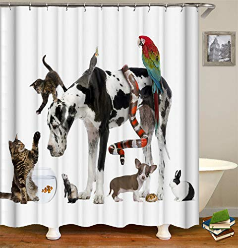 ZZZdz olieverfdecoratie, zwarte kat, vliegende vogel, pompoenlamp, papegaai, slang, hond, appel, oranje.douchegordijn. Waterdicht. Mildewproof. Eenvoudig te reinigen. 180 x 180 cm.