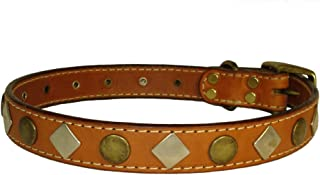 Auburn Leathercrafters Heirloom Collection Studded Collar