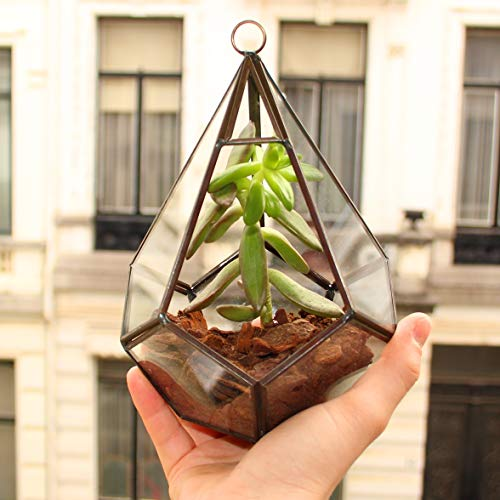 Biscay Home - Jarrón moderno geométrico para plantas pequeñas, terrario micro tierra, decoración de casa para colocar o colgar