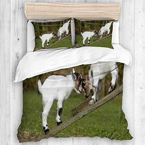 BEITUOLA - Set copripiumino con due simpatici caprini su una panchina con corna e immagine di corni, 3 pezzi, set di 2 pezzi, misura singola 135 x 200 cm