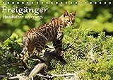 Freigänger - Hauskatzen unterwegs (Tischkalender 2020 DIN A5 quer): Hauskatzen in freier Natur (Monatskalender, 14 Seiten ) (CALVENDO Tiere)