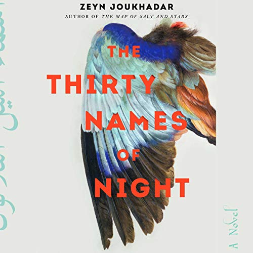 The Thirty Names of Night cover art