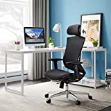 Office Chair, Tribesigns Ergonomic Mesh Office Chair with Sliding Seat, High Back Desk Chair with Lumbar Support, Adjustable Backrest and Headrest, 3D Armrest